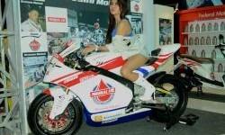Replika Motor Tim Federal Oil Gresini Moto2  Bersama Model
