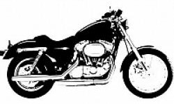 Motor Harley Davidson 500 cc Awali Debut Tahun Depan