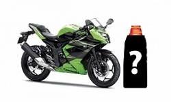 Hari Ini, Kawasaki Ninja 250 RR Mono Masuk Dealer!