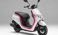 Honda Dunk Skutik Imut Dari Jepang, Alami Revisi