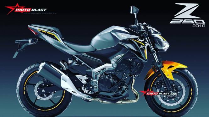 Kawasaki Siapkan Sport Naked 250cc