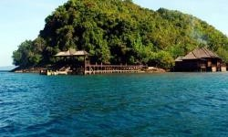 Nikmati Keindahan Bawah Laut Bersama Keluarga di Pulau