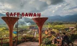 Manikmati Makanan Sambil Menikmati Pemandangan Alam di Cafe Sawah