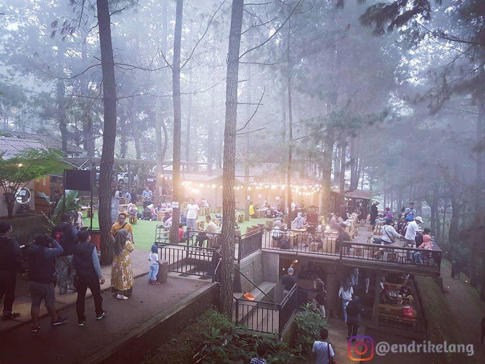 Kedai Kopi Daong, Tempat Ngopi Sekaligus Piknik