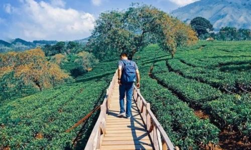 foto: kanalmalang.net